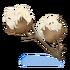 Baumwollblüten