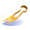 Cisailles dorées