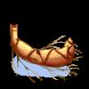 Tubercule de bambou