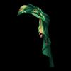 https://www.eldarya.com.br/static/img/item/player/web_portrait/22ca393b35bbcd0171f1b0d6df8162dd