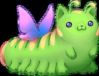 Catatapillar ausgewachsen