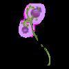 Blumenlaterne Spring Faery 2