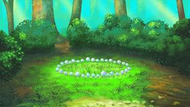 1Las -Krąg z grzybków