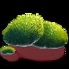 https://vignette.wikia.nocookie.net/eldarya/images/e/eb/Mousse.png/revision/latest?cb=20180127111504&path-prefix=fr