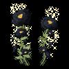 TH Kwiaty11