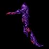 StealthCrowNaramiennik2