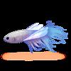 PeixeLibélula