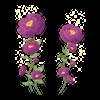 TH Kwiaty7