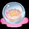 Lotus Précieux