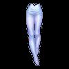 https://www.eldarya.com.br/static/img/item/player/web_portrait/f0885ceb150af16b01d6f527635824f1