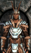 Stalhrim light armor