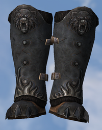 Stormking Boots