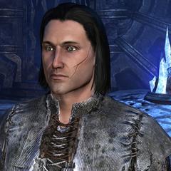 Arik Morgan in Unsung Heroes of the Oblivion Crisis (3E 433)