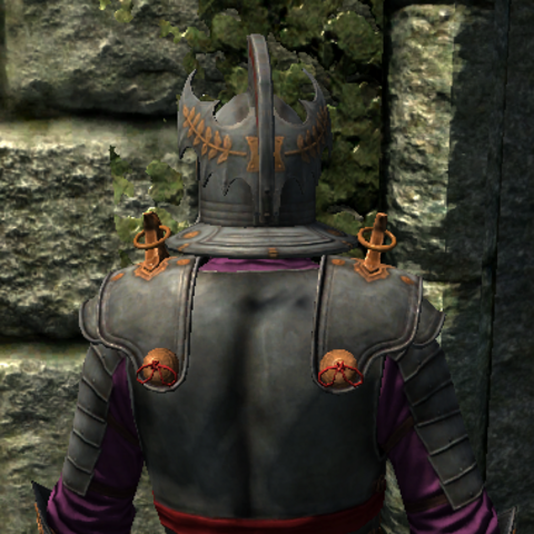 Emperor's Armor from the back