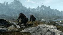 Skyrim tundra by darkhorses90-d4tnh27
