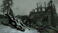 Scheletro drago Dragonborn