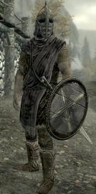 The Rift Guard