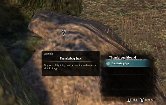 File:Thunderbug Eggs.png
