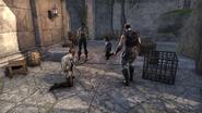 Baronas Group Game