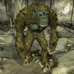 Troll z gry The Elder Scrolls IV: Oblivion