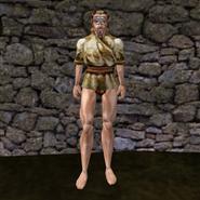 Простая рубашка (Morrowind) 5 (муж)