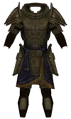 Dwarven Armor (Armor Piece)