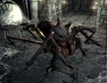 Wounded Frostbite Spider.png