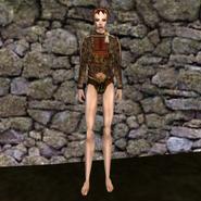 Дорогая рубашка (Morrowind) 1 жен