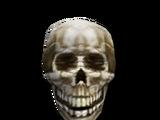Квестовые предметы (Bloodmoon)