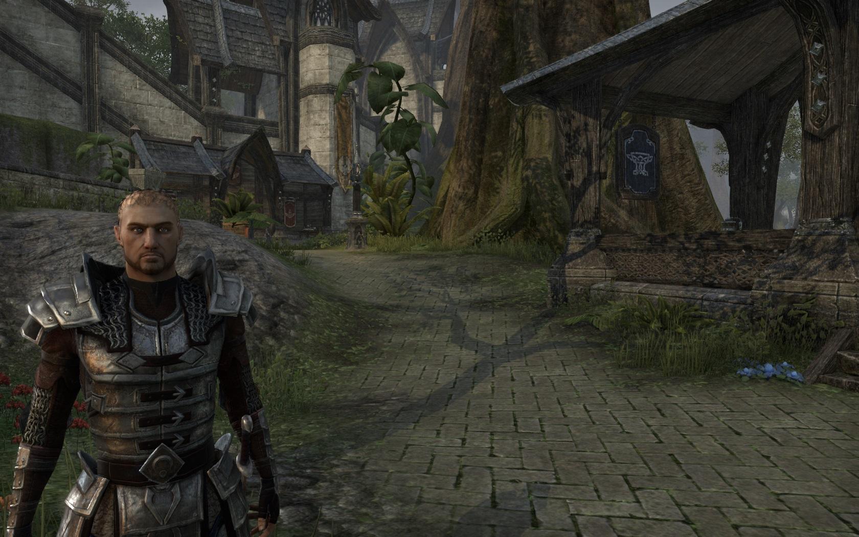 Category:Online: Heavy Armor Sets | Elder Scrolls | FANDOM powered