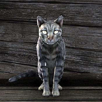 File:Cat.png