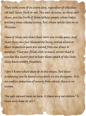 File:Slave's Diary.png