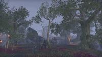 Дешаан (Online) — Долина Призрачного Змея