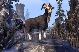 File:Sanguine's Black Goat.png