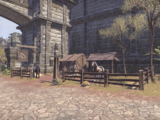 Арентийские кони и рысаки
