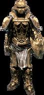 Костяная броня с наплечниками (ж)