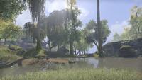 Сиродил (Online) — Лесное озеро