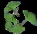 Ginko Leaf.png