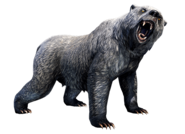 Gray War Bear Collectible
