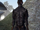 Dark Brotherhood Assassin (Tribunal)