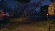 Isle of Contemplation 2