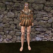 Дорогая рубашка (Morrowind) 3 муж