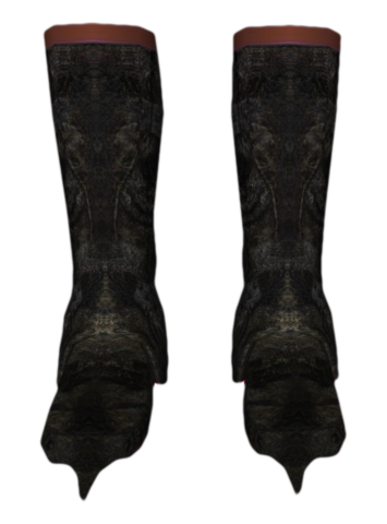 File:BlackwoodBoots.png