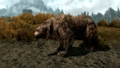 Cave bear.png