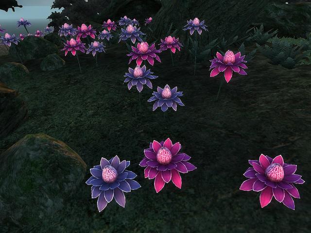 File:Mana Bloom.png