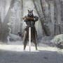 Strażnik karawany (Legends)