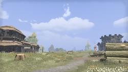Лесопилка замка Бладмейн