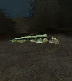 Рыба-убийца (Morrowind)