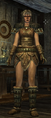 Stormcloack Officer Armor Female.png