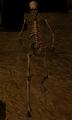 Crippled Skeleton.png